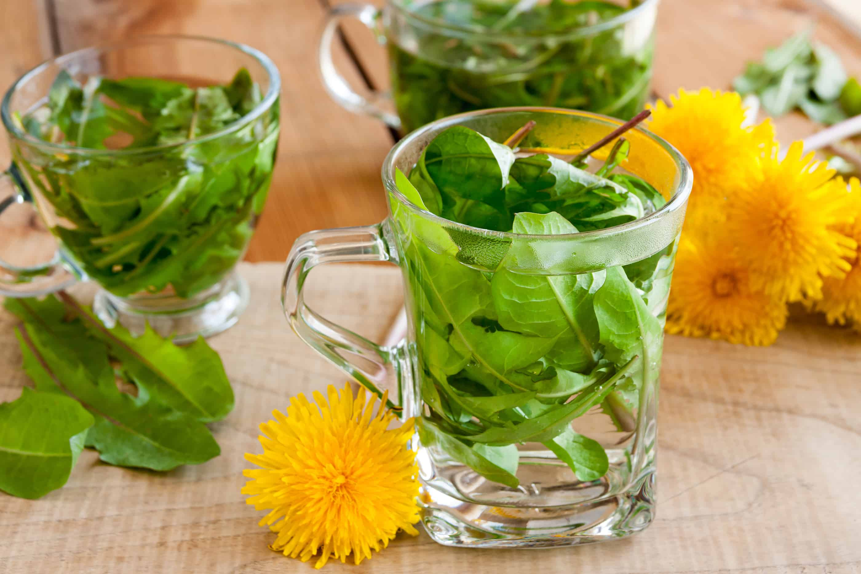 Dandelion Tea; It's Good for You!